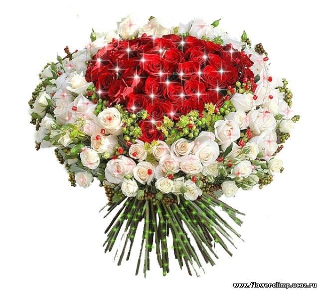 http://flowerolimp.ucoz.ru/_ph/7/737012998.jpg